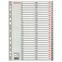 Rozřaďovač A4 1-54 listů plastový Esselte 100109