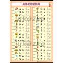 Česká abeceda XL (100x70 cm)
