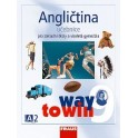 Angličtina 9 Way to Win