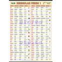 Anglická nepravidelná slovesa - Irregular verbs 1 XL (100 x 70 cm)