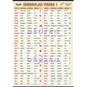 Anglická nepravidelná slovesa - Irregular verbs 1 XXL (140 x 100 cm)