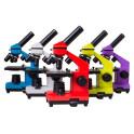 Školní mikroskop barevný
